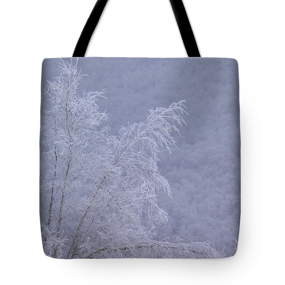 Winter Snow Tote Bag featuring the photograph Burden Of Winter by Natalie LaRocque