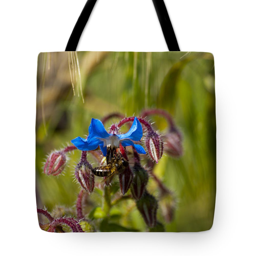 Bee Tote Bag featuring the photograph Busy Bee by Focus Fotos