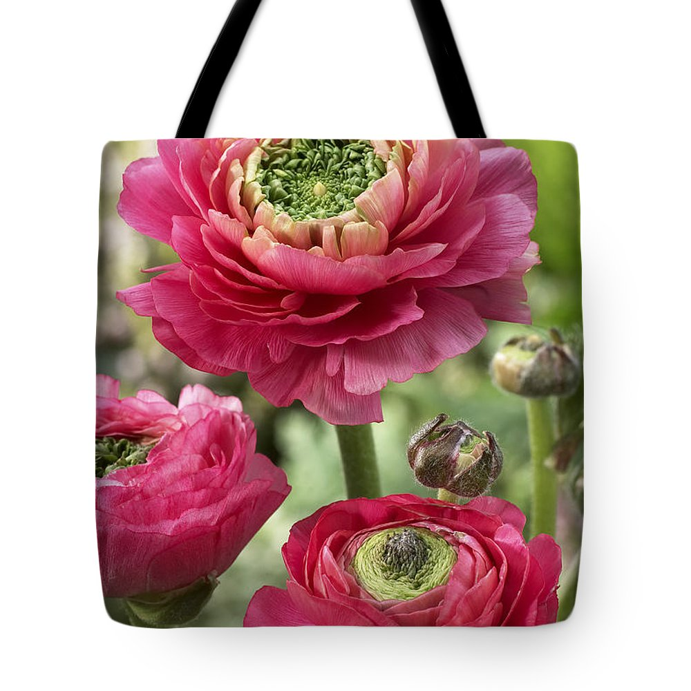 Vp Tote Bag featuring the photograph Buttercup Ranunculus Sp Mirabelle Vert by VisionsPictures