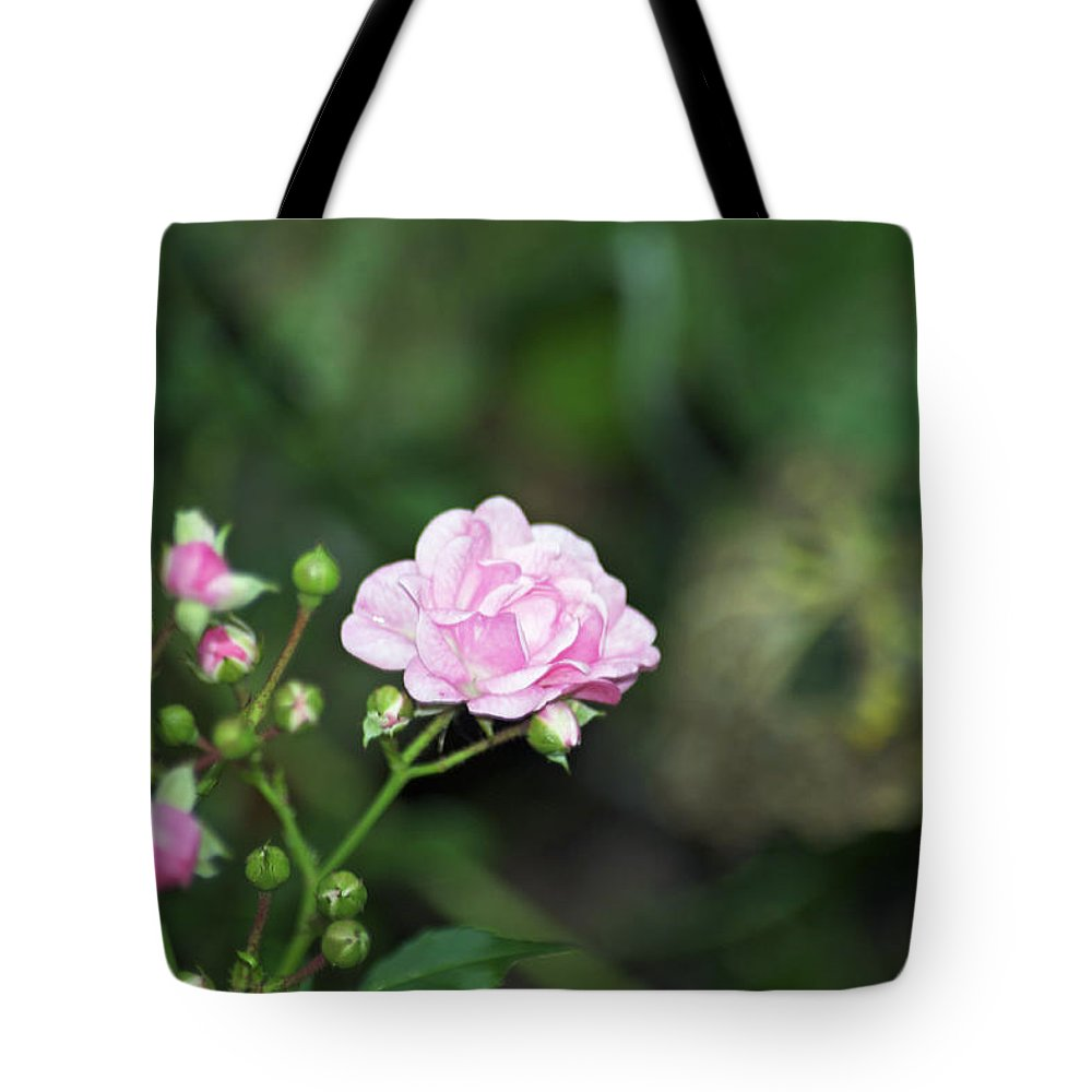 Rose Tote Bag featuring the photograph By Any Other Name by Elaine Mikkelstrup