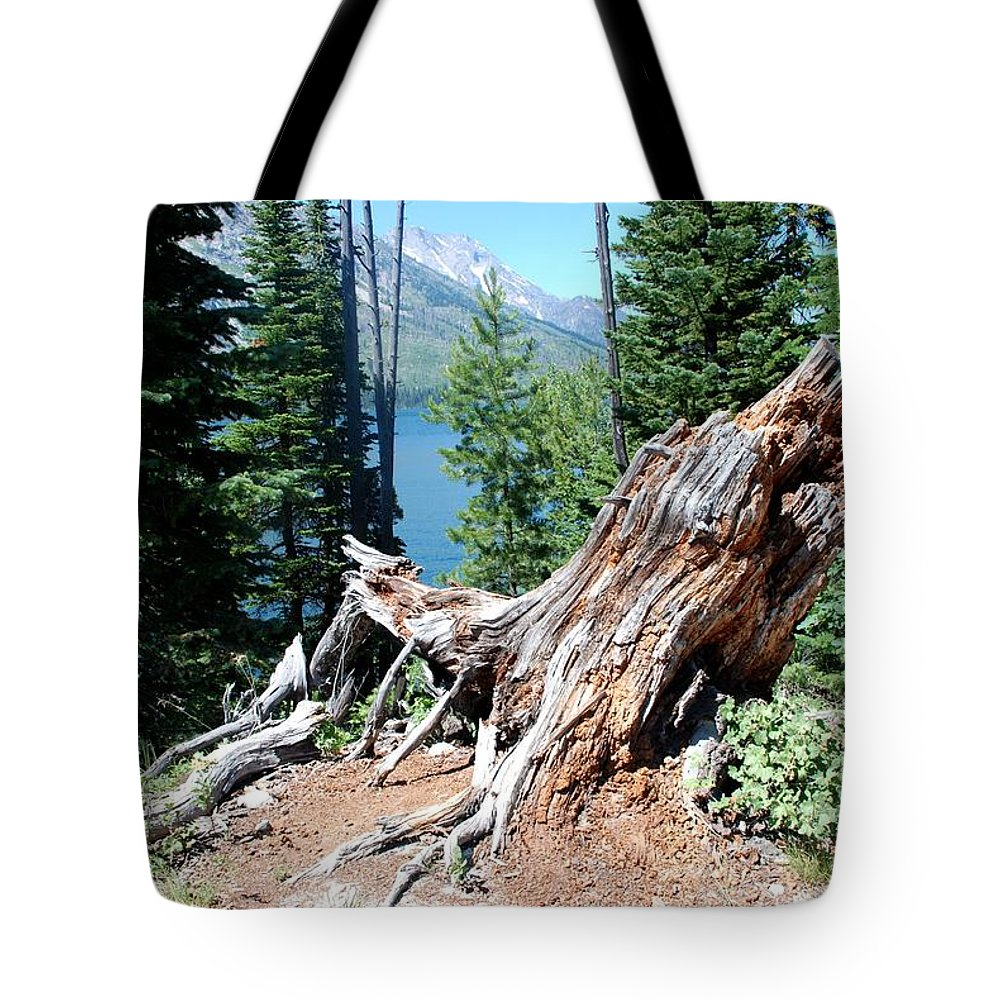 Jenny Lake Tote Bag featuring the photograph By Jenny Lake by Dany Lison