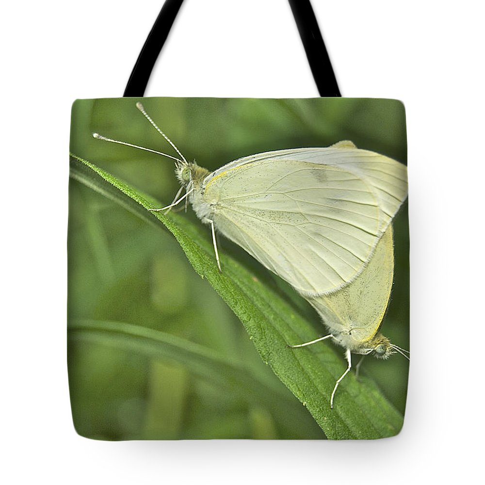 Animal Tote Bag featuring the photograph Cabbage White Butterflies 5267 by Michael Peychich