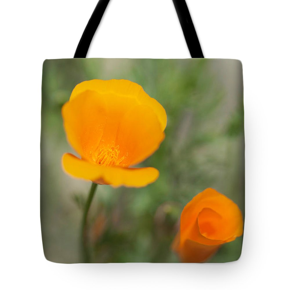 California Poppy Photographs Tote Bag featuring the photograph California Poppy Flowers by Brooke Roby