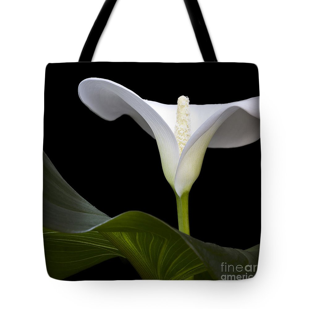 Nature Tote Bag featuring the photograph Calla Beauty by Heiko Koehrer-Wagner