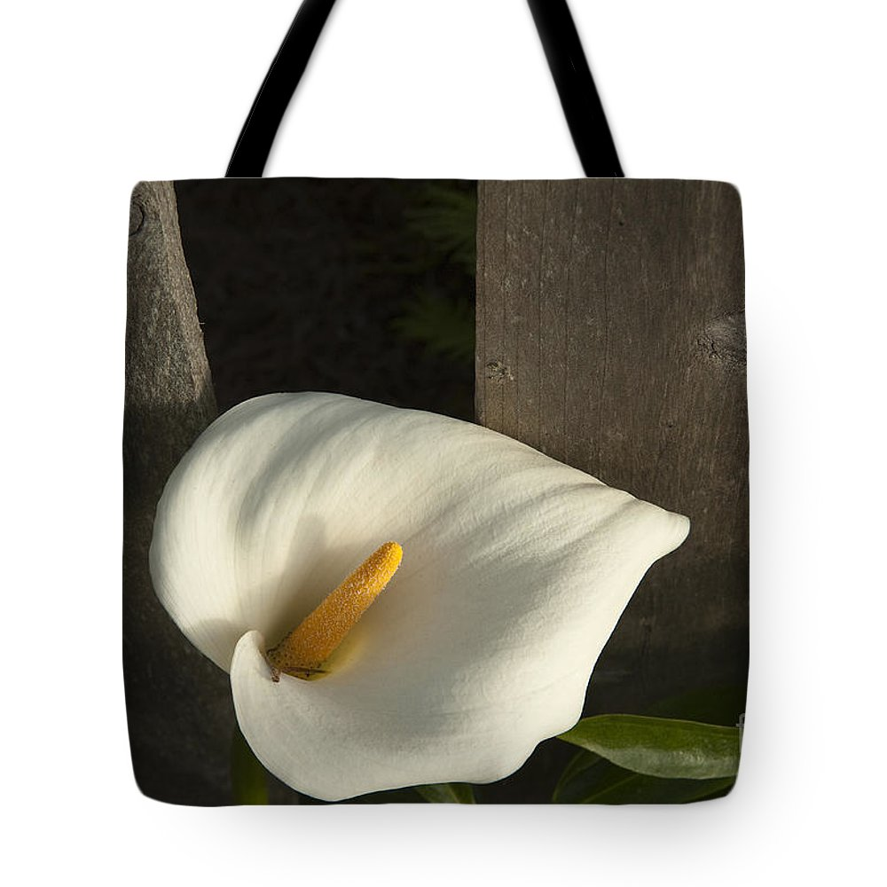 Sandra Bronstein Tote Bag featuring the photograph Calla Lily And Fence by Sandra Bronstein