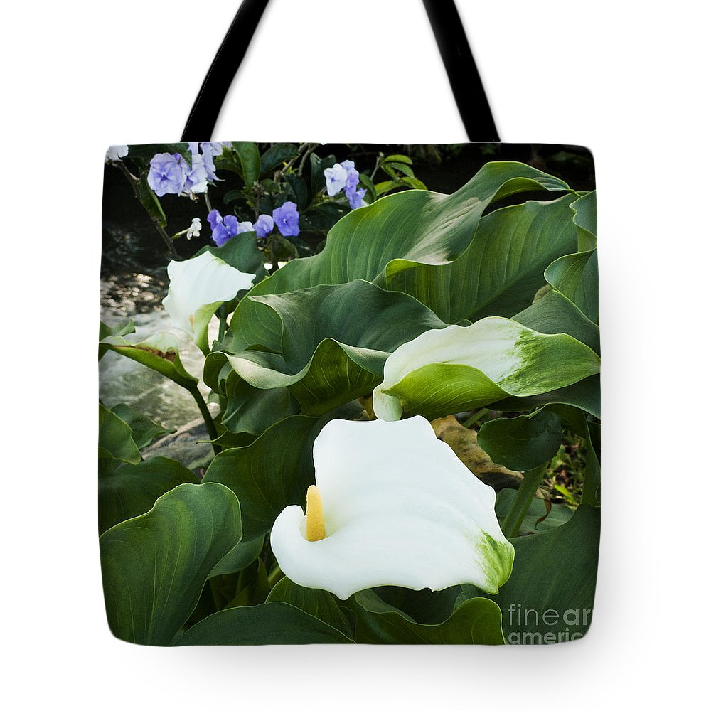 Nature Tote Bag featuring the photograph Callas At River by Heiko Koehrer-Wagner