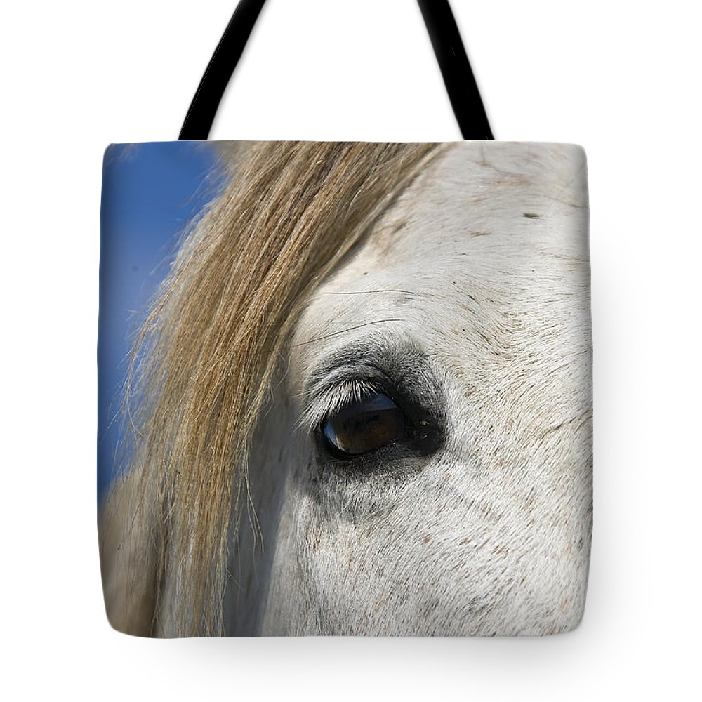 Mp Tote Bag featuring the photograph Camargue Horse Equus Caballus Eye by Konrad Wothe