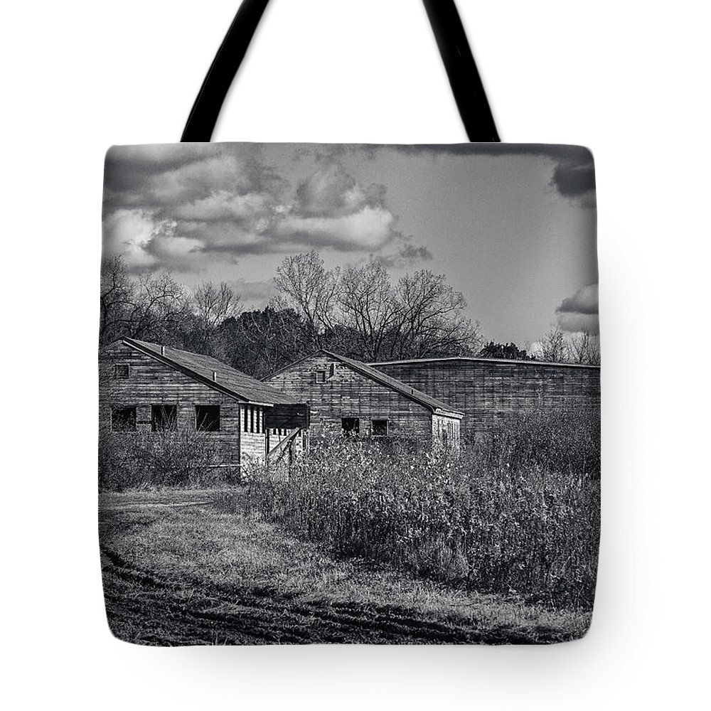 5d Mark Ii Tote Bag featuring the photograph Camouflaged by CJ Schmit