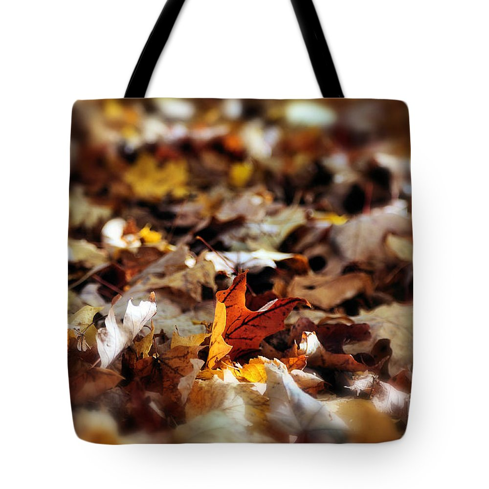 Fallen Leaves Tote Bag featuring the photograph Can You Hear The Crunch by Andrea Kollo