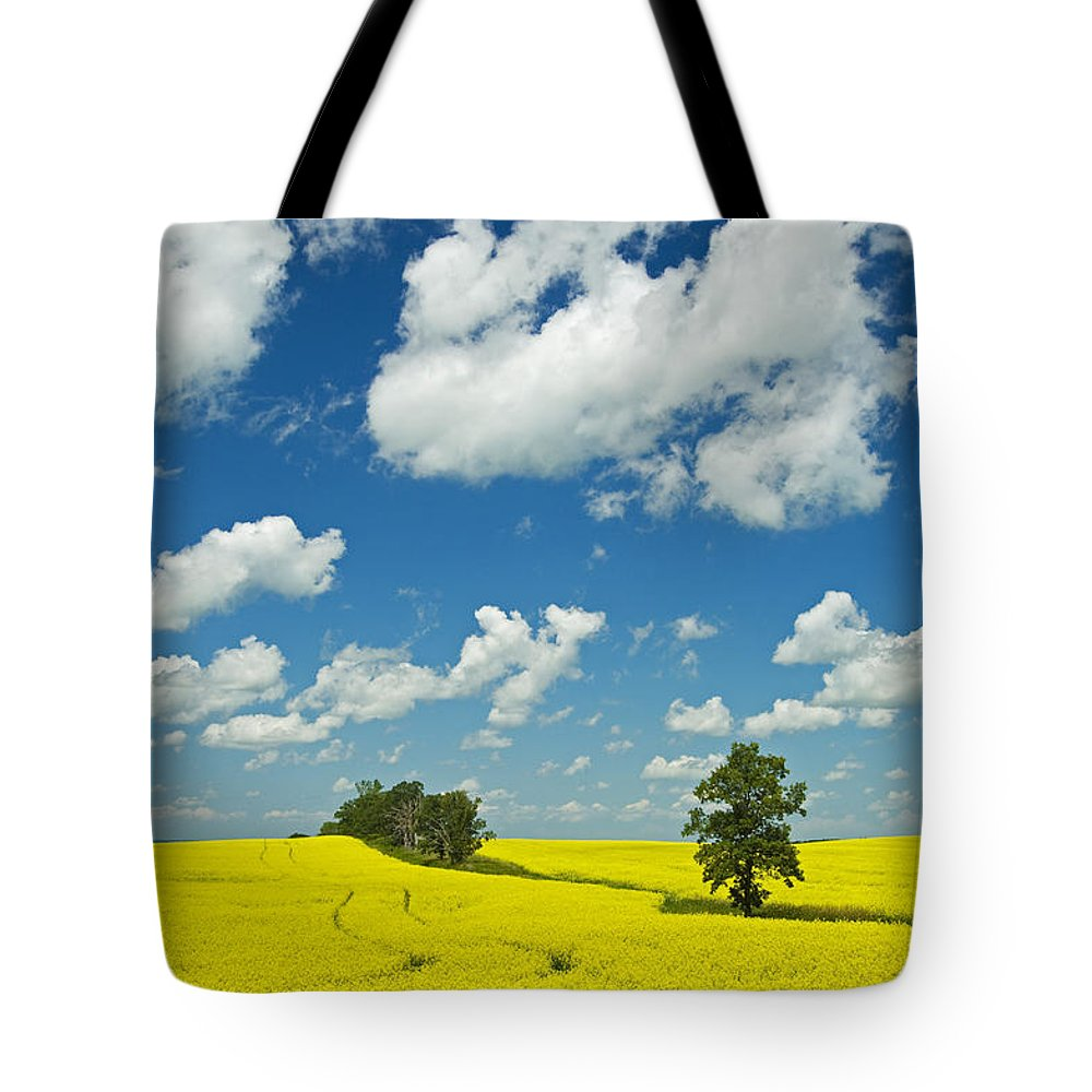 Agriculture Tote Bag featuring the photograph Canola Field And Clouds, Rathwell by Mike Grandmailson
