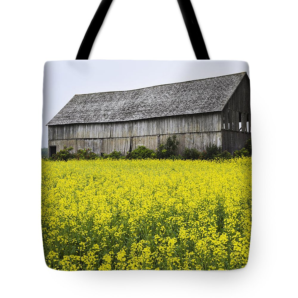 Agriculture Tote Bag featuring the photograph Canola Field And Old Barn by Yves Marcoux