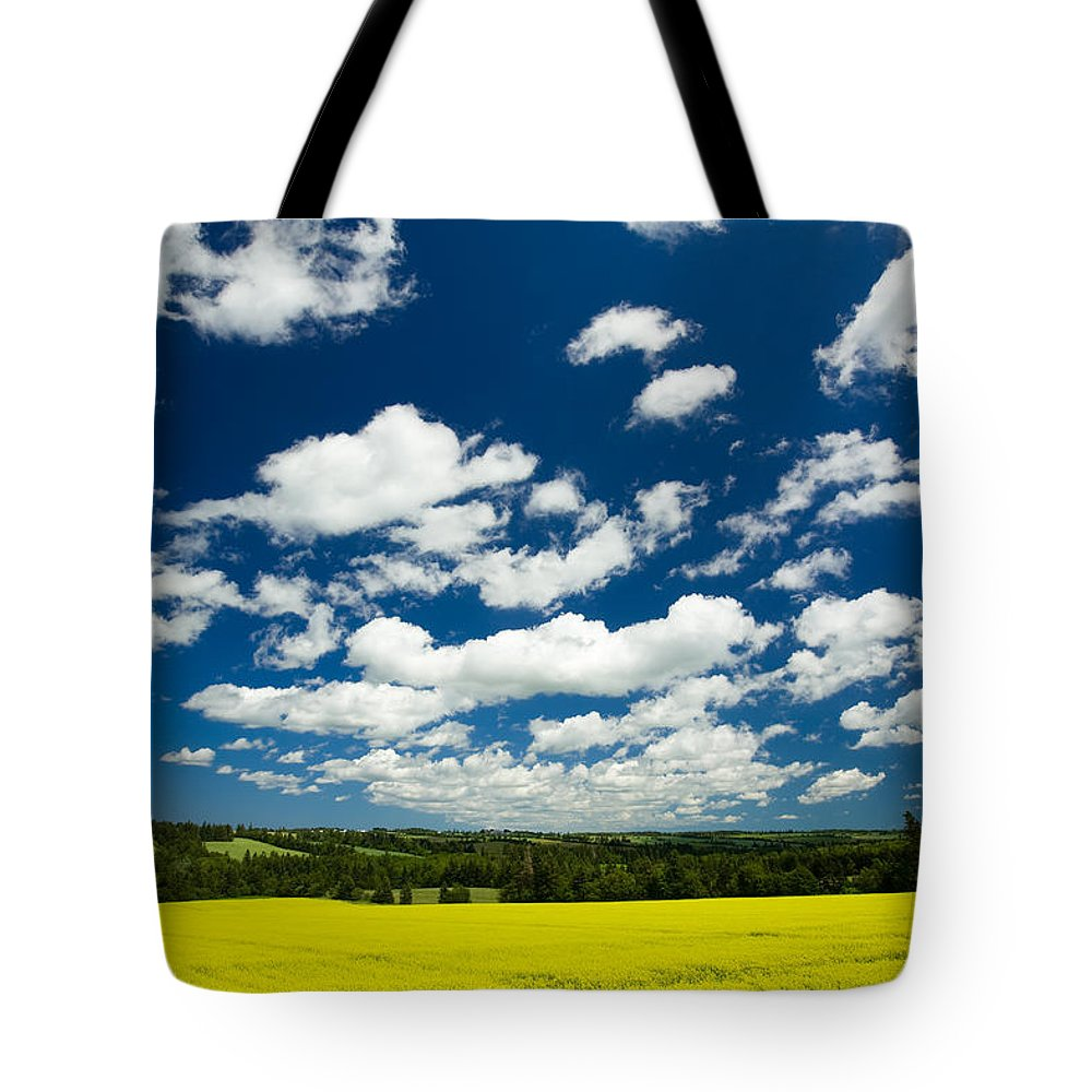 Agriculture Tote Bag featuring the photograph Canola Field, Brookfield, Prince Edward by John Sylvester