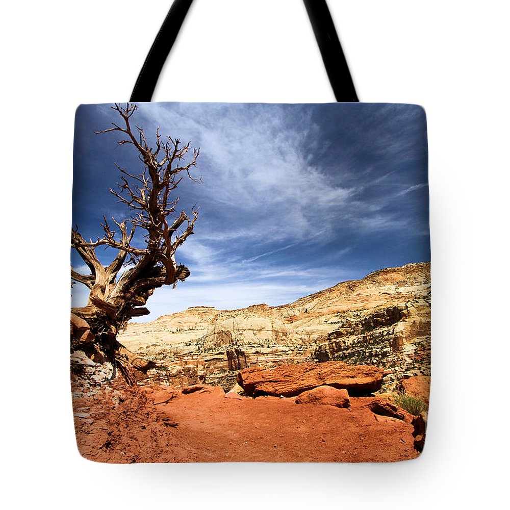 Capitol Reef Tote Bag featuring the photograph Capitol Hike by Adam Jewell