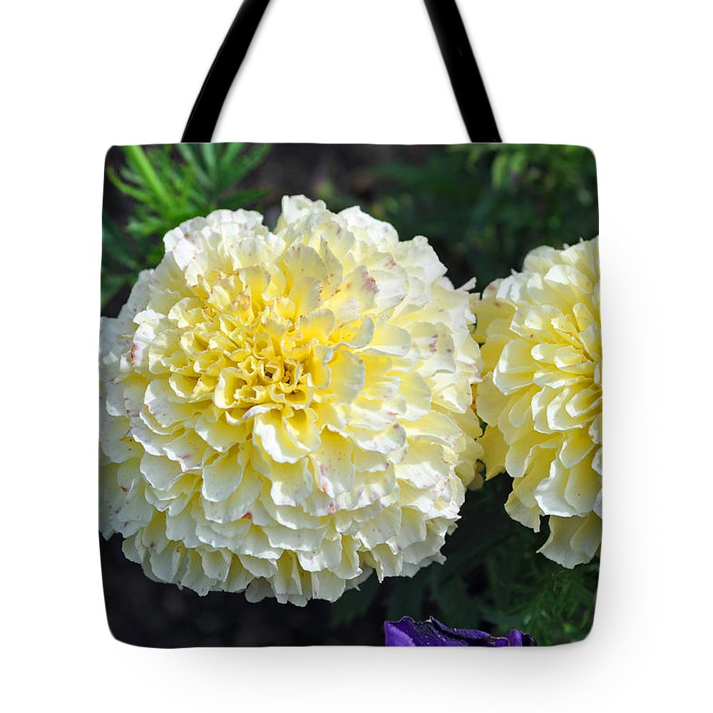 Bloom Tote Bag featuring the photograph Carnations by Tikvah's Hope
