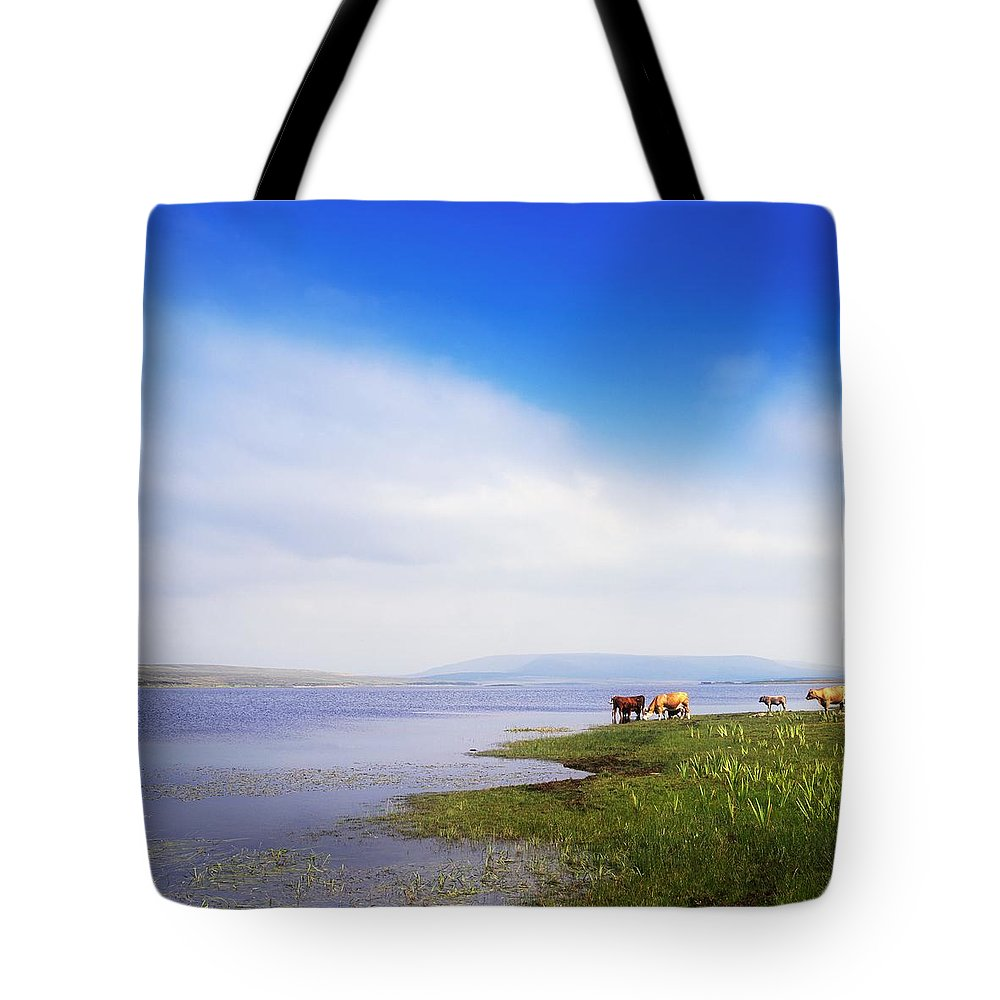 Animals Tote Bag featuring the photograph Carrowmore Lake, Co Mayo, Ireland by The Irish Image Collection