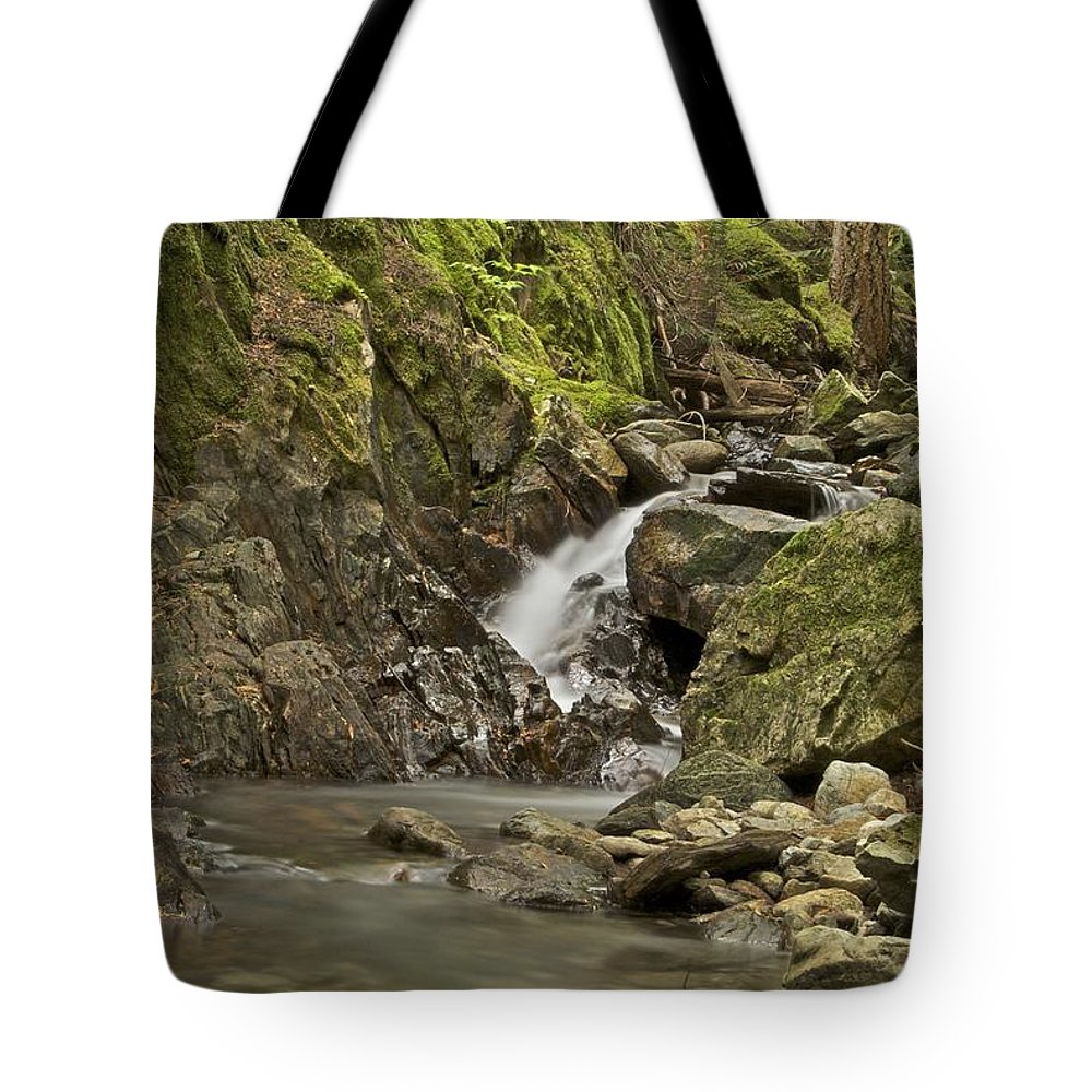 Cascades Tote Bag featuring the photograph Cascades Happy Trail 9128 by Michael Peychich