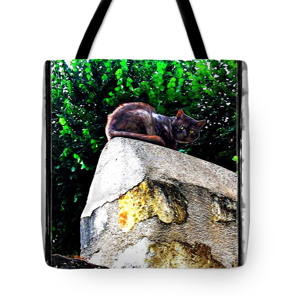 Cat Tote Bag featuring the photograph Cat On Medieval Wall by Joan Minchak