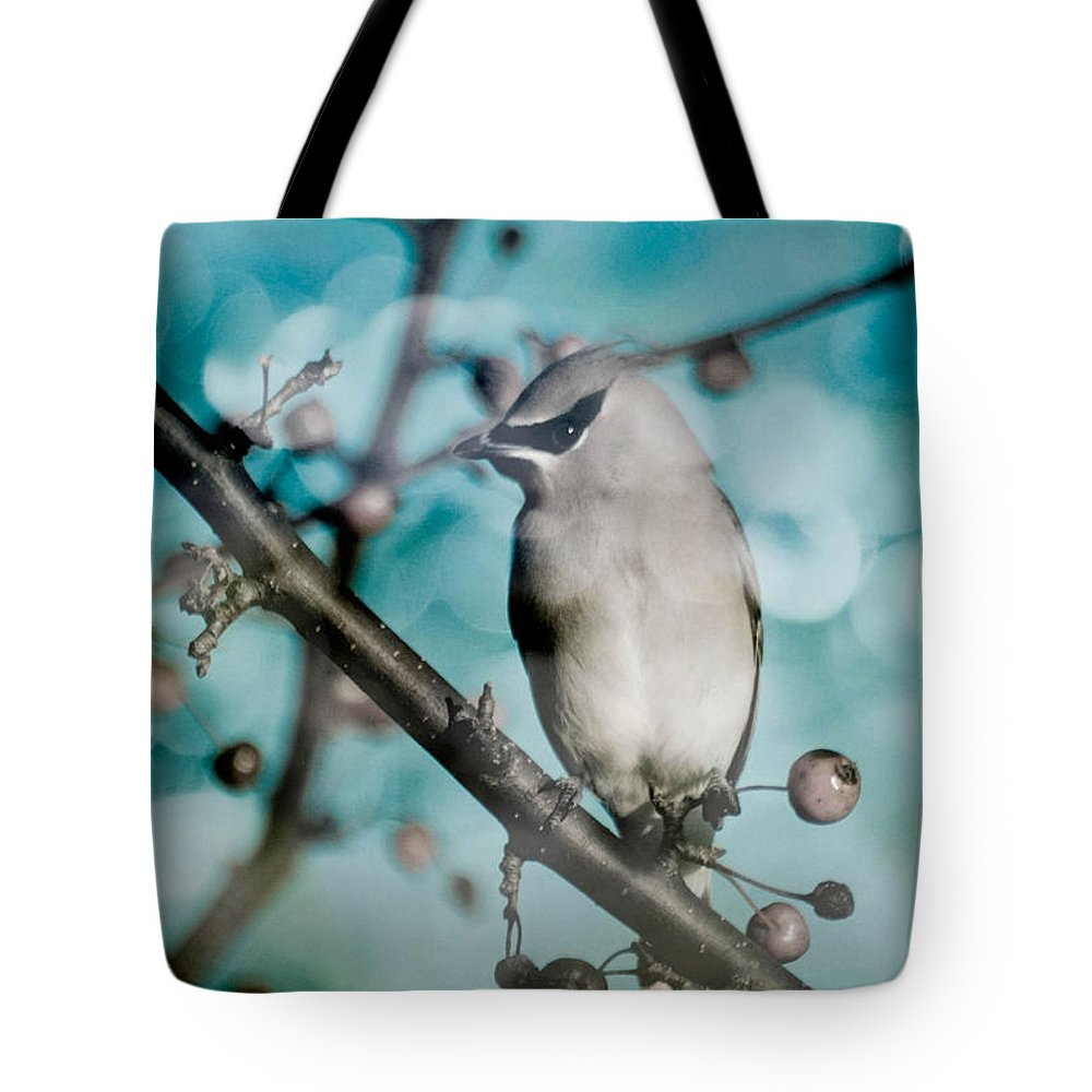 Bird Tote Bag featuring the photograph Catch The Bandit by Trish Tritz