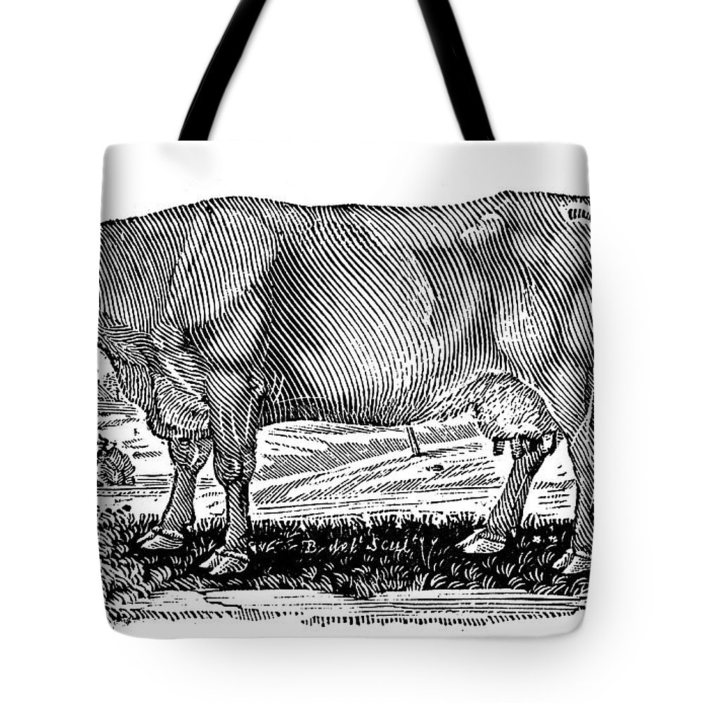 1790 Tote Bag featuring the photograph Cattle by Granger