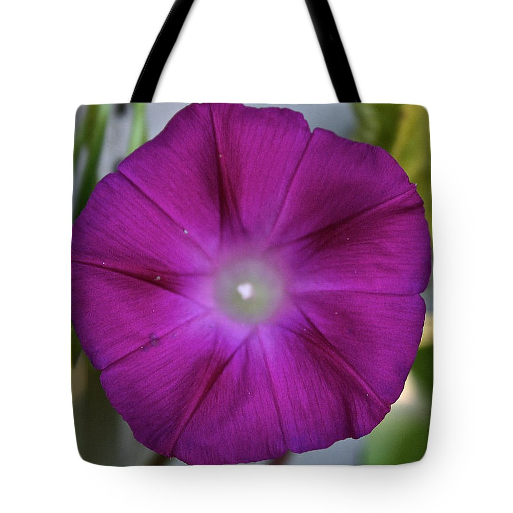 Flower Tote Bag featuring the photograph Center Of Attention by Susan Herber