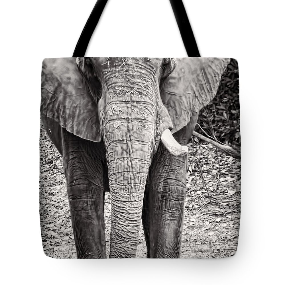 Elephant Tote Bag featuring the photograph Charge by Traci Cottingham