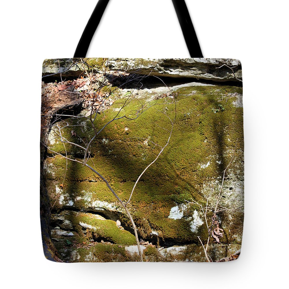 Boulder Tote Bag featuring the photograph Cherokee Face by Kristin Elmquist