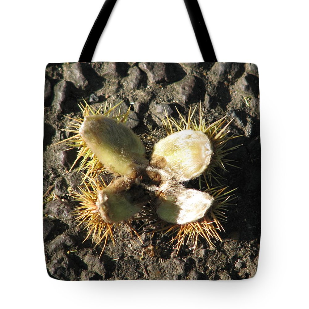 Sviatoslav Tote Bag featuring the photograph Chestnut Flower by Sviatoslav Alexakhin