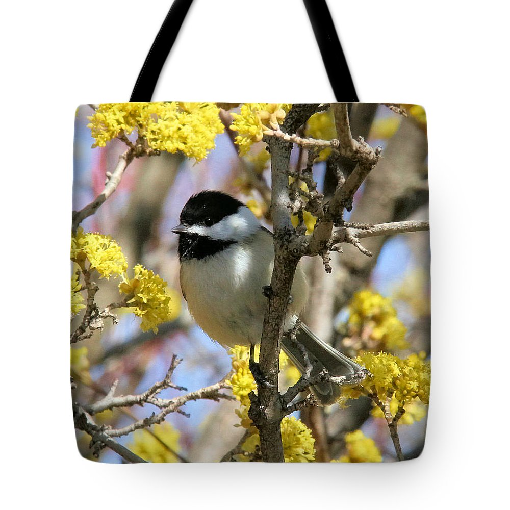 Chickadee Tote Bag featuring the photograph Chickadee Among The Blossoms by Doris Potter