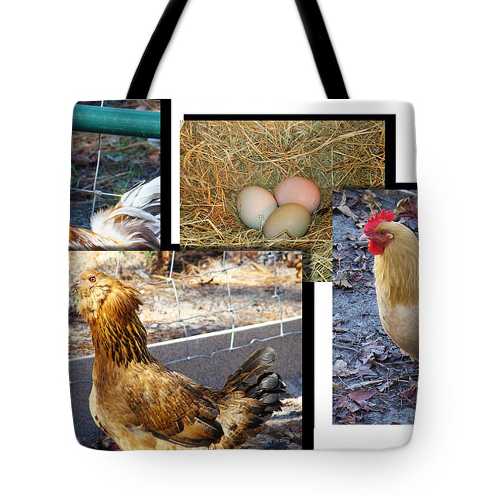 Chickens Tote Bag featuring the photograph Chickens by Michael MacGregor