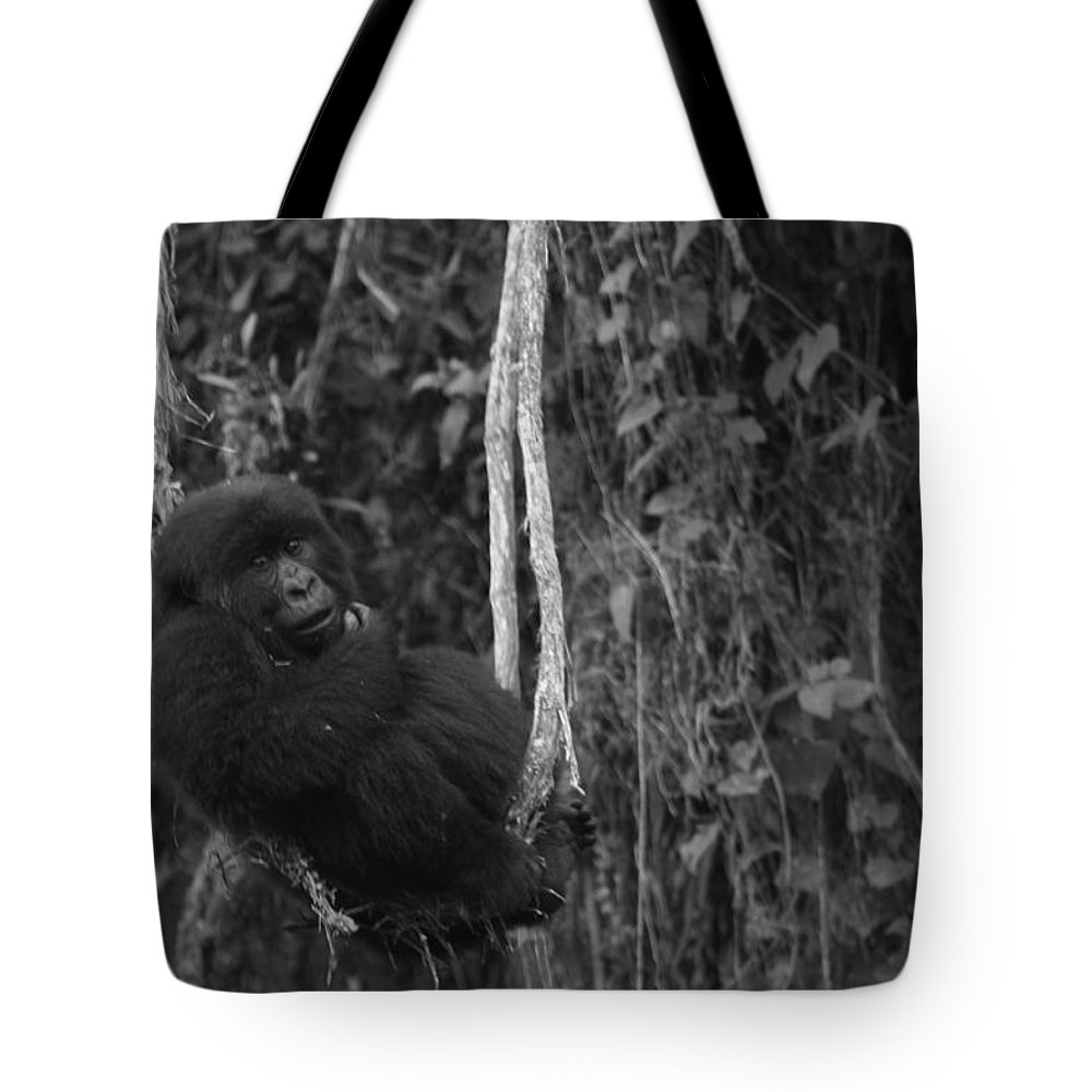 Africa Tote Bag featuring the photograph Chilling Out by Bruce J Robinson