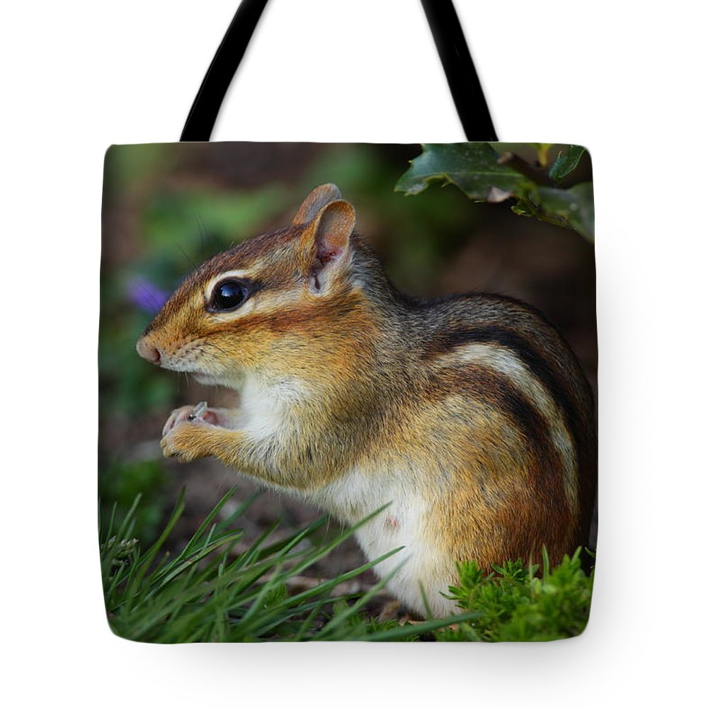 Chipmunk Tote Bag featuring the photograph Chipmunk by Bruce J Robinson