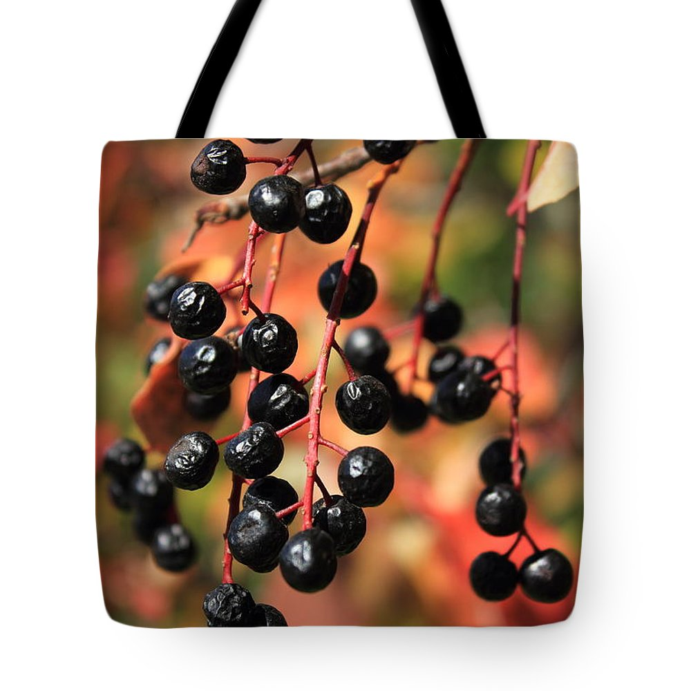 Berries Tote Bag featuring the photograph Chokecherry by Jim Sauchyn