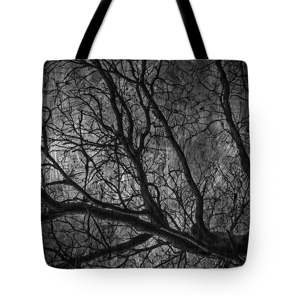 Window Framed Prints Tote Bag featuring the photograph Climbing Escaped Scratches by The Artist Project