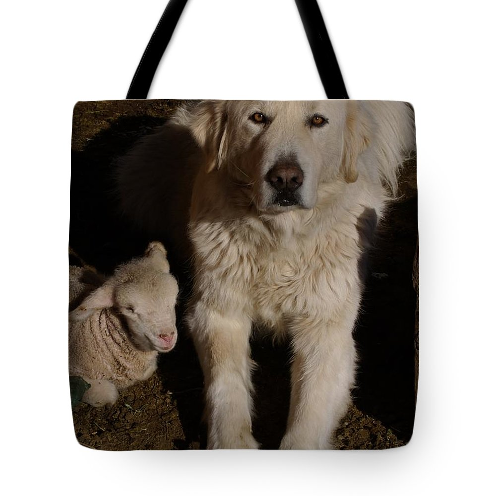 Great Pyrenees Tote Bag featuring the photograph Close Personal Protection by Charles and Melisa Morrison
