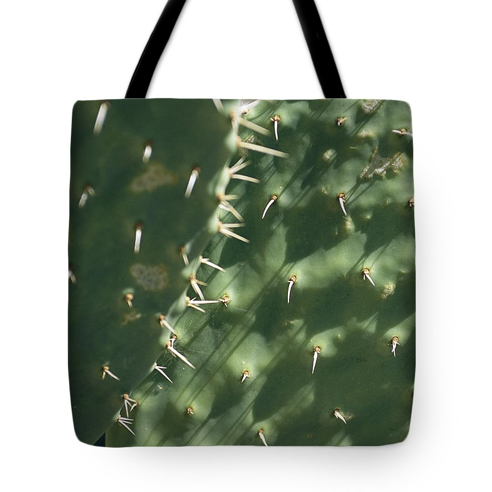 North America Tote Bag featuring the photograph Close-up Of A Prickly Pear Cactus by Todd Gipstein