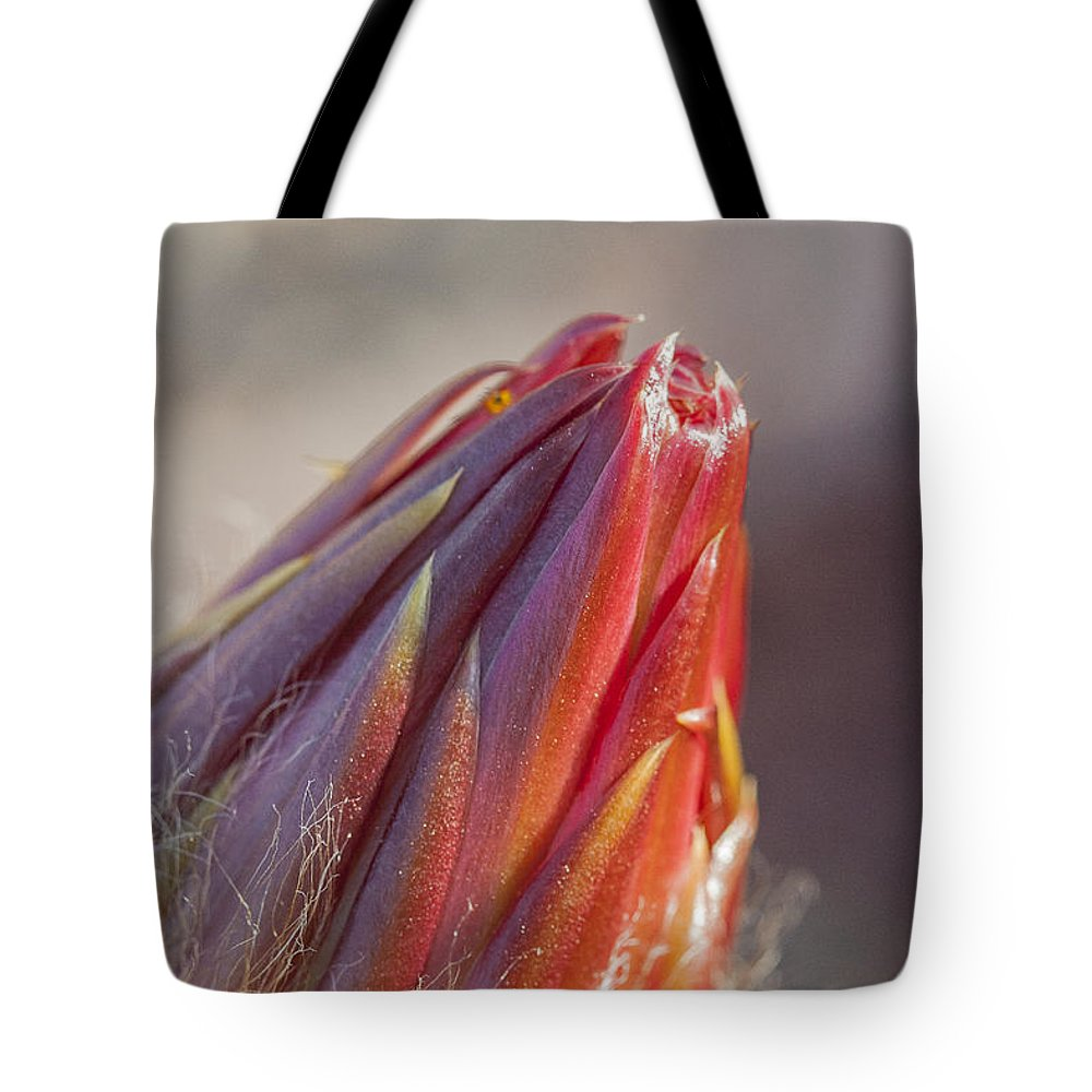 California Tote Bag featuring the photograph Close Up On Cactus Flower Bud by Darcy Michaelchuk