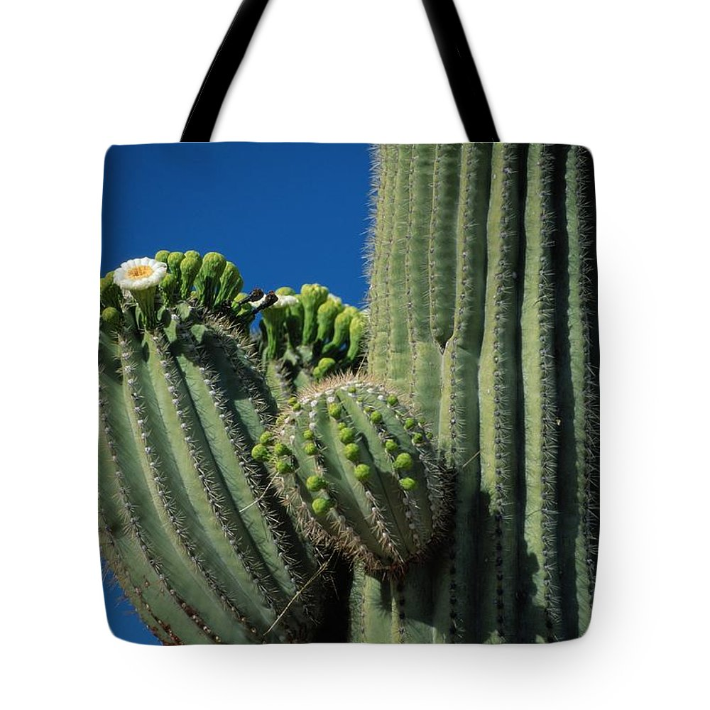 united States Tote Bag featuring the photograph Close View Of A Saguaro Cactus Saguaro by Raymond Gehman