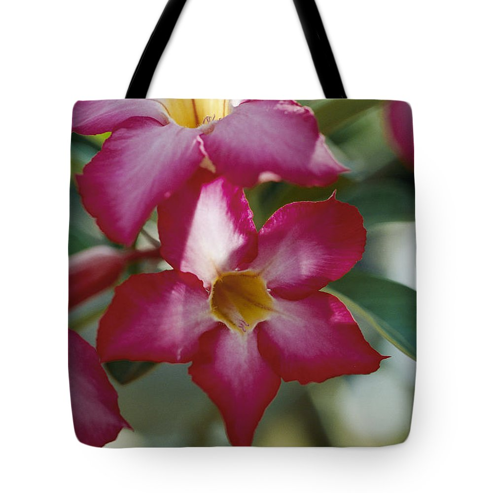 vietnam Tote Bag featuring the photograph Close View Of A Tree Blossom Flute by Steve Raymer