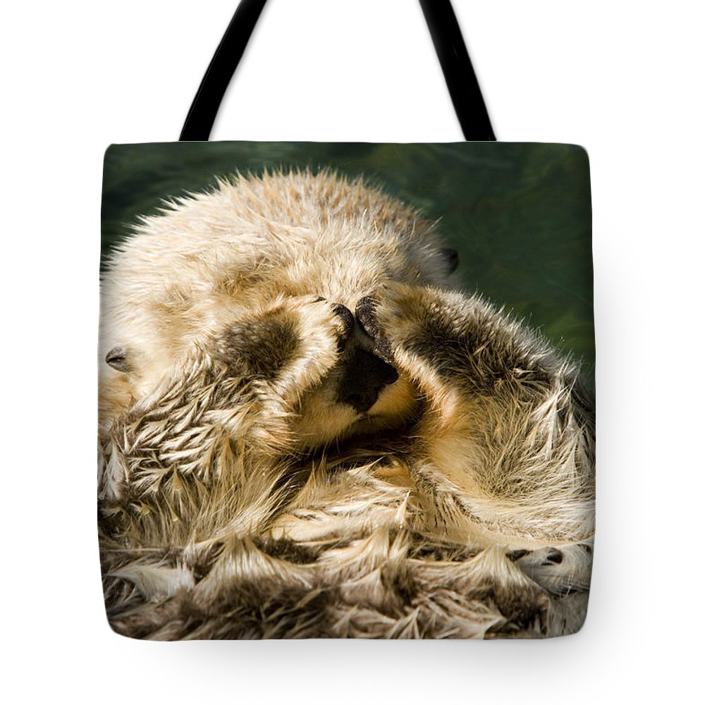 Cute Photographs Tote Bag featuring the photograph Closeup Of A Captive Sea Otter Covering by Tim Laman