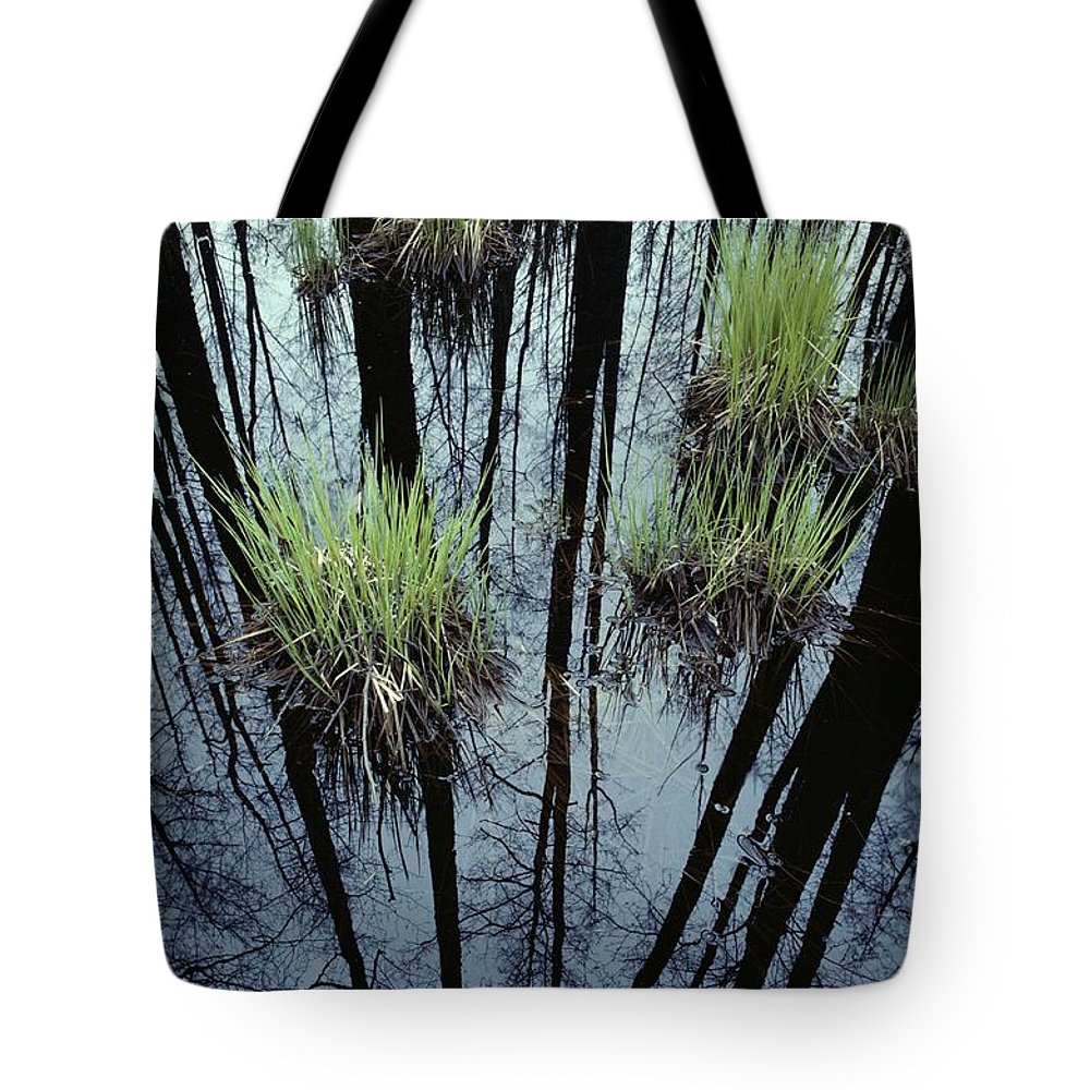 Plants Tote Bag featuring the photograph Clumps Of Grass In Water Reflecting by Mattias Klum