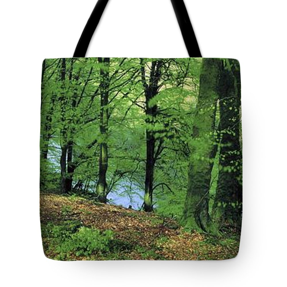 Clogher Tote Bag featuring the photograph Co Kerry, Standing Stone On Clogher by The Irish Image Collection