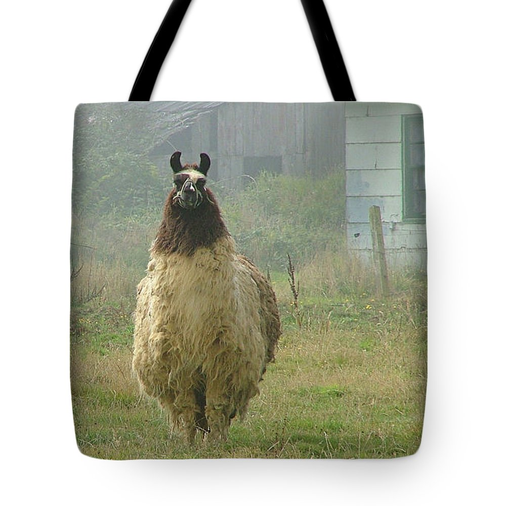 Llama Canvas Prints Tote Bag featuring the photograph Coast Llama by Wendy McKennon