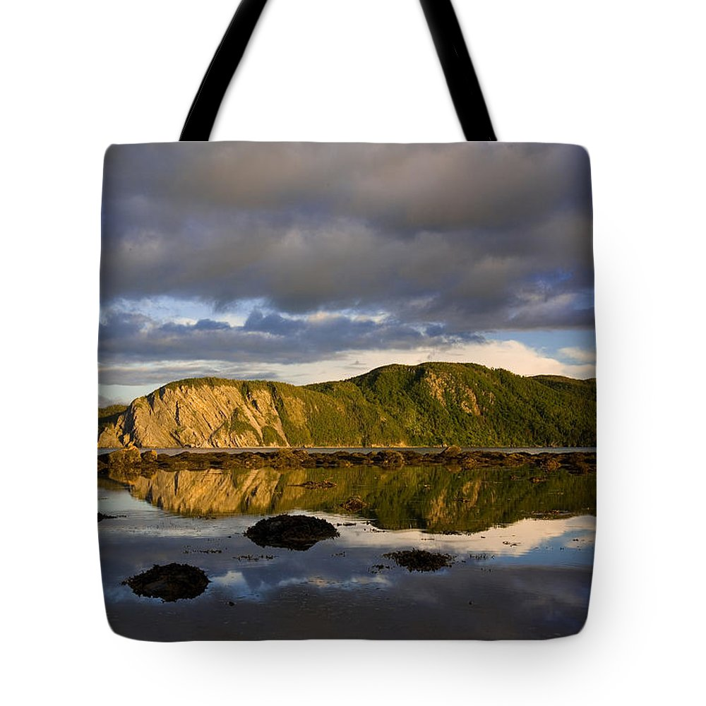 Bonne Bay Tote Bag featuring the photograph Coastal Cliffs In Evening Light by John Sylvester