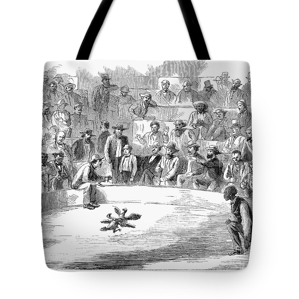 1866 Tote Bag featuring the photograph Cock Fighting, 1866 by Granger