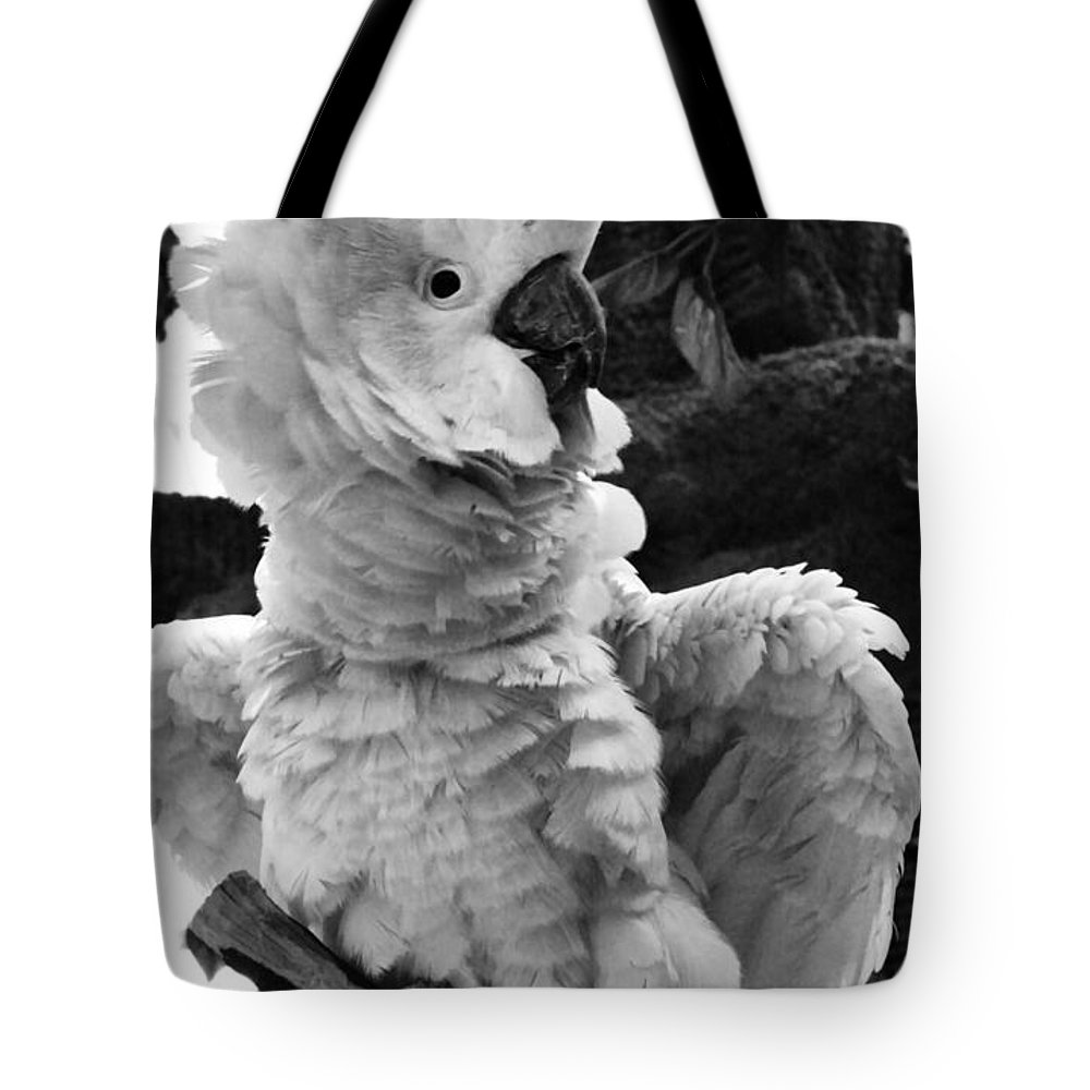 Cockatoo Tote Bag featuring the photograph Cockatoo by Sally Bauer