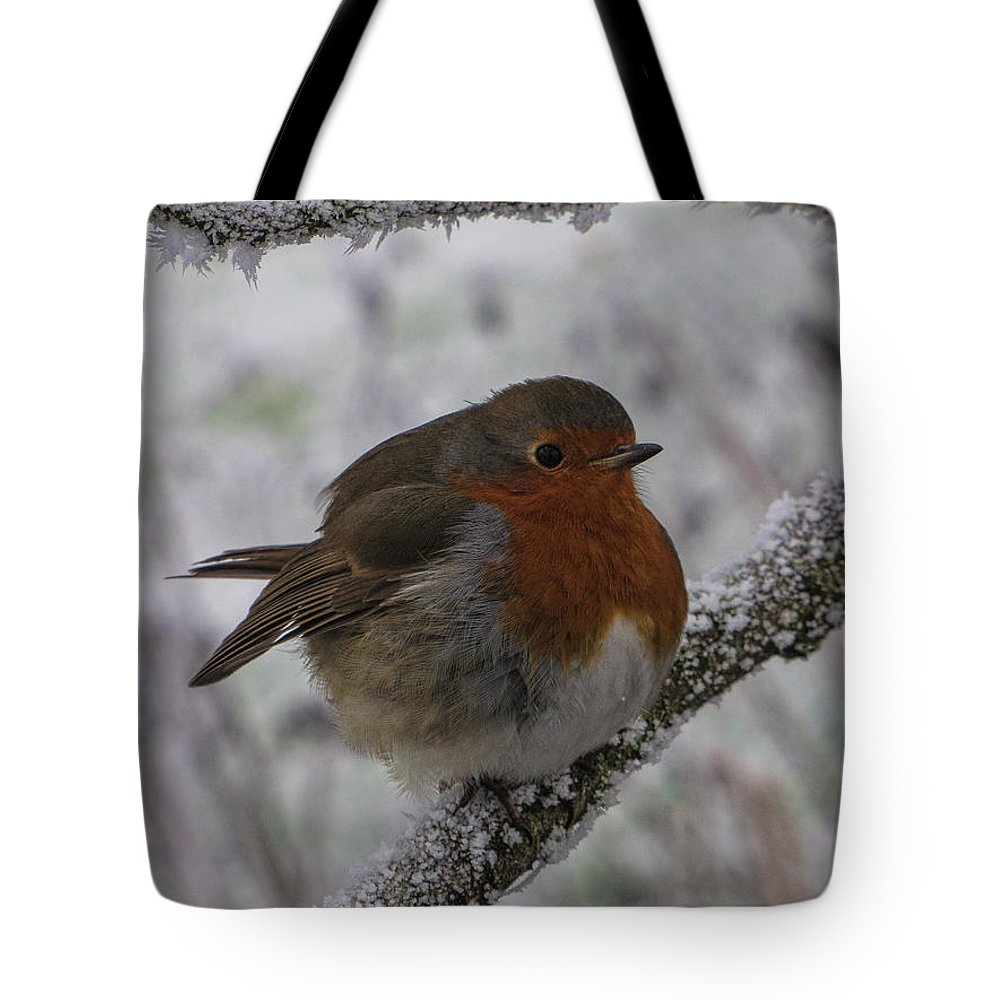 Robin Tote Bag featuring the photograph Cold Robin by David Gleeson