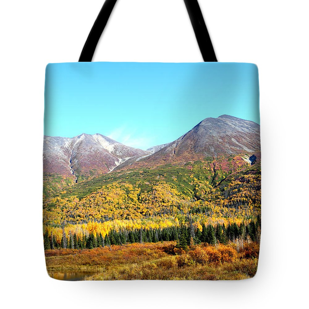 Doug Lloyd Tote Bag featuring the photograph Color Palet by Doug Lloyd