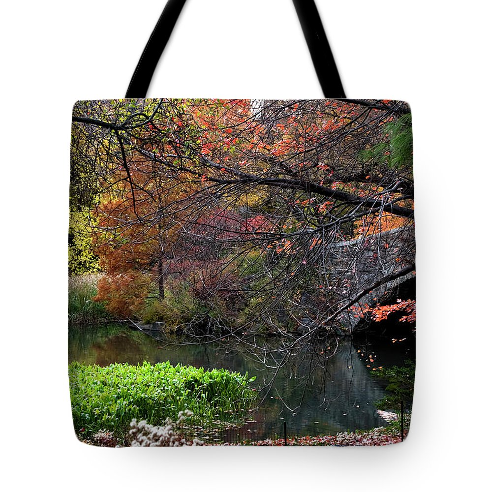 New York City Tote Bag featuring the photograph Color Splash In Central Park by Lorraine Devon Wilke