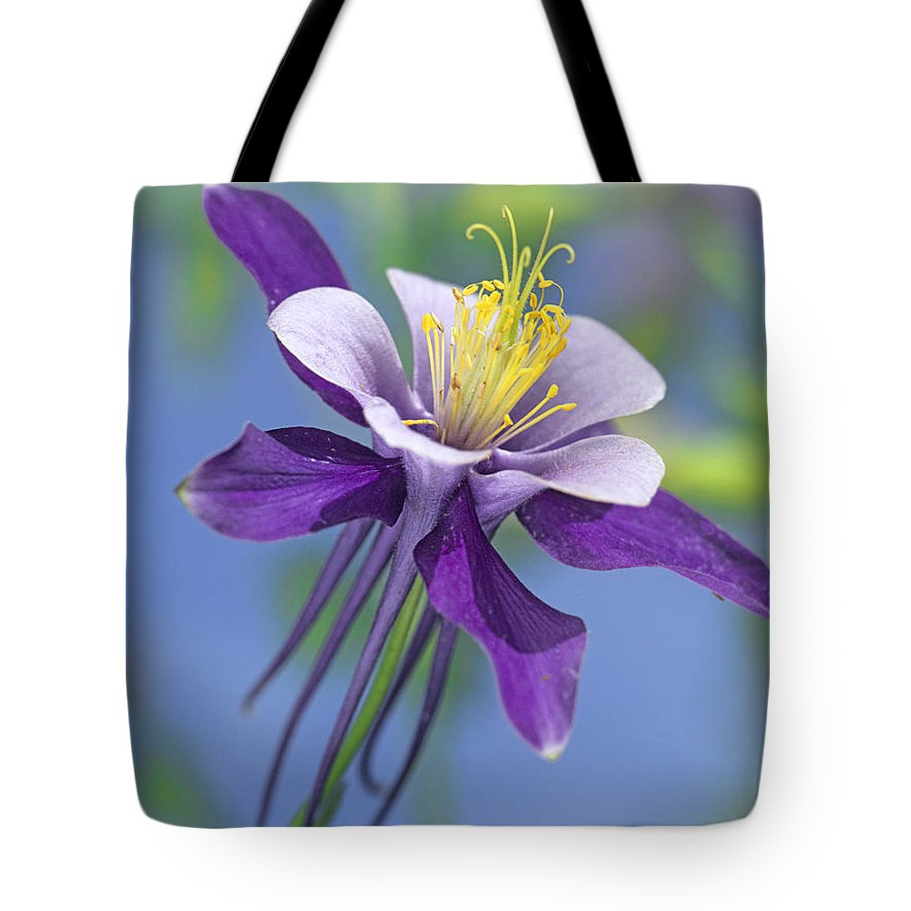 00176669 Tote Bag featuring the photograph Colorado Blue Columbine Close by Tim Fitzharris