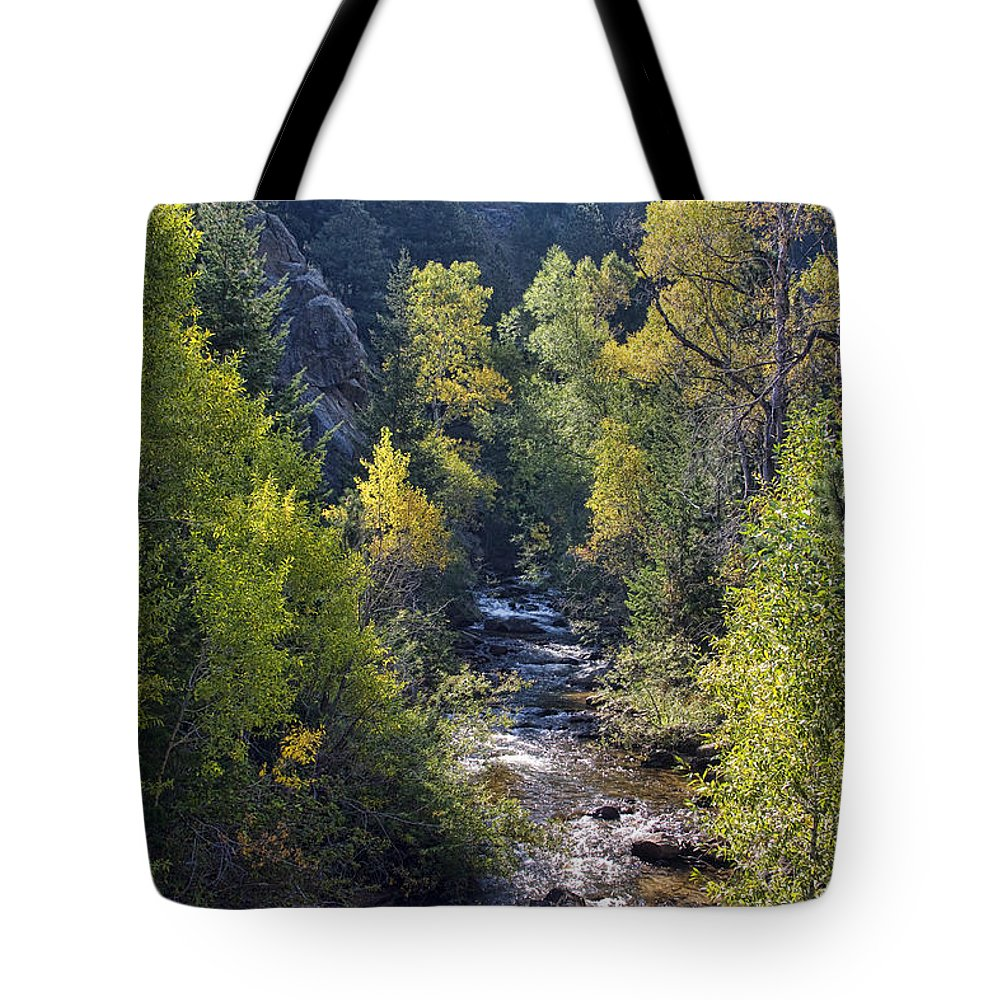 Creek Tote Bag featuring the photograph Colorado Left Hand Creek Boulder County Autumn View by James BO Insogna